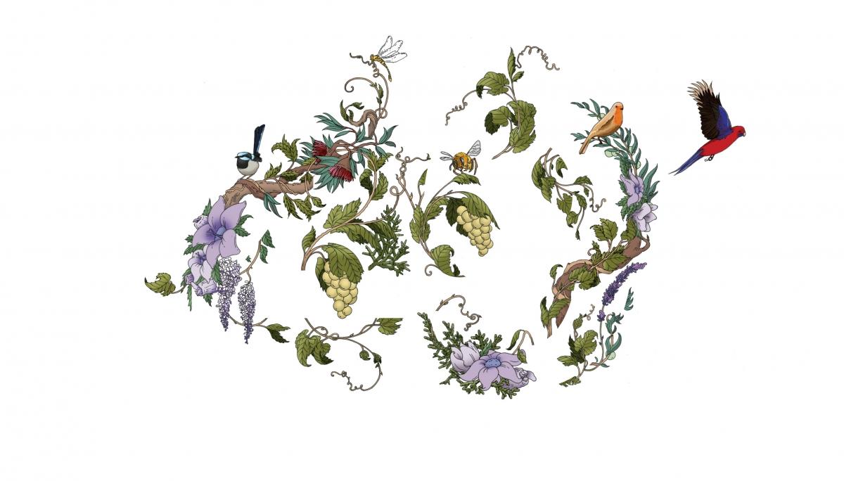 10. Coloured illustration.
